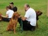 H Borkpwski Dogs 013