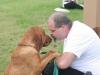 K Brasswell Dogs 003