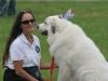 K Brasswell Dogs 005